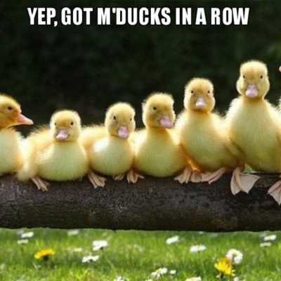 Yep, got m'ducks in a row